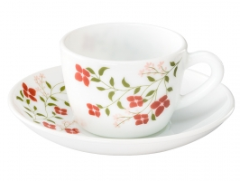 Janus 12 Pc Cup Saucer Set