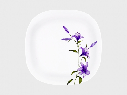 Viva Dinner Plate 6 Piece
